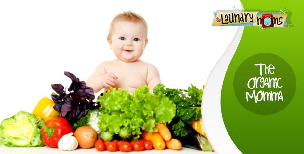 The Organic Momma, Eating Healthy, Feeding a Family, IBS Disease, Eating Organic