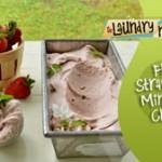 Fresh Strawberry Mint Ice Cream
