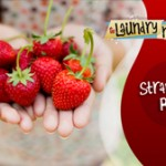 Strawberry Row