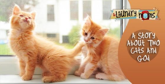 twocats_andGod-august_16
