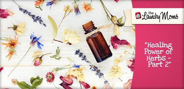 Healing Power of Herbs - Part 2