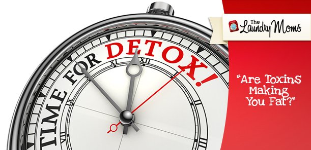 Are Toxins Making You Fat