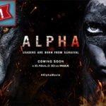 Holly on Hollywood – Alpha